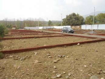 900 sqft, Plot in Builder manasavi Enclave Horawala Road, Dehradun at Rs. 6.5000 Lacs
