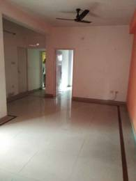 800 sqft, 2 bhk Apartment in Builder Project Kasba, Kolkata at Rs. 10000