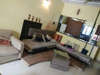 1191 sqft, 2 bhk Apartment in Kalpataru Harmony Wakad, Pune at Rs. 24500