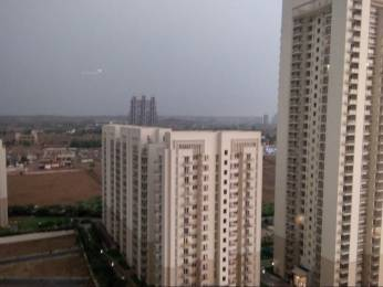 1799 sqft, 3 bhk Apartment in DLF The Primus Sector 82A, Gurgaon at Rs. 22000