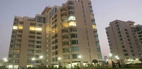2943 sqft, 4 bhk Apartment in Raheja Atlantis Sector 31, Gurgaon at Rs. 55000