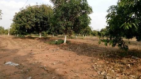 500 sqft, Plot in Builder GREEN PARK LANDS Amangal, Hyderabad at Rs. 50000