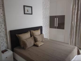 597 sqft, 1 bhk Apartment in Eldeco Edge Sector 119, Noida at Rs. 26.0000 Lacs