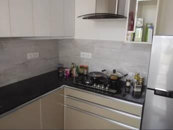 1743 sqft, 3 bhk Apartment in CHD Avenue 71 Sector 71, Gurgaon at Rs. 1.1800 Cr