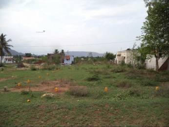 2650 sqft, Plot in Builder Project Periyanaickenpalayam, Coimbatore at Rs. 8.5000 Lacs