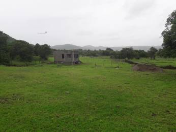 3000 sqft, Plot in Builder Project Revdanda Road, Alibaugh at Rs. 13.5000 Lacs