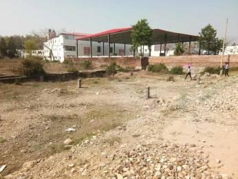 1179 sqft, Plot in Builder Project Sudhowala, Dehradun at Rs. 15.7000 Lacs