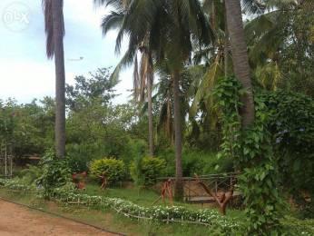 7200 sqft, Plot in Builder Holiday resort adhanoor alanganallur, Madurai at Rs. 8.2000 Lacs
