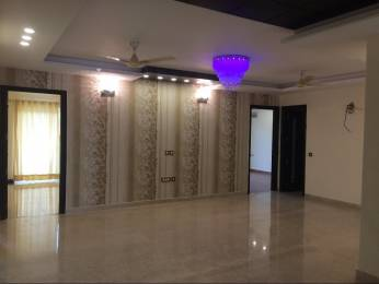4518 sqft, 4 bhk BuilderFloor in Vipul Floors Sector 48, Gurgaon at Rs. 2.1000 Cr