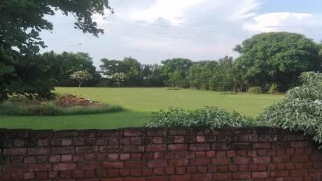 900 sqft, Plot in Builder Permit Road Bhondsi Bhondsi, Gurgaon at Rs. 12.0000 Lacs