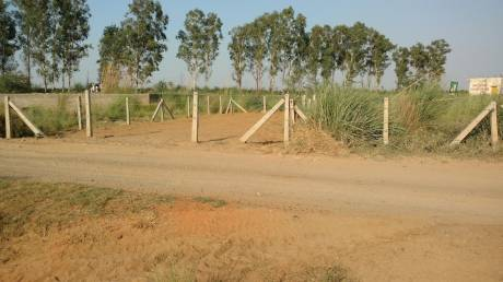 1800 sqft, Plot in Builder AIIMS JHAJJAR NEAR NCI AIIMS Road, Jhajjar at Rs. 50.0000 Lacs