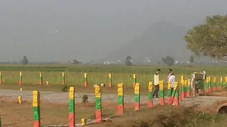 1350 sqft, Plot in Builder Kavya developers Nunna Road, Vijayawada at Rs. 12.7500 Lacs