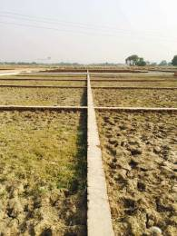 1000 sqft, Plot in Builder SHINE ROYAL RESIDENCY Faizabad road, Lucknow at Rs. 5.0000 Lacs