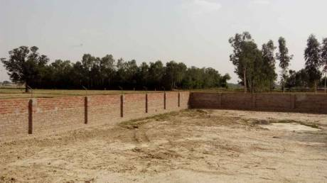 648 sqft, Plot in Builder shine vaidik vihar raibareli road nigohan, Lucknow at Rs. 2.9160 Lacs