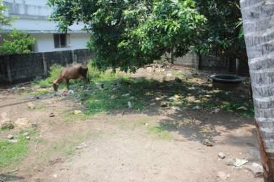 2160 sqft, Plot in Builder Project North Paravoor, Kochi at Rs. 25.0000 Lacs