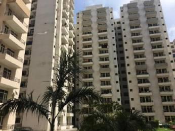 1500 sqft, 3 bhk Apartment in Builder Khanna Properties Ramesh Nagar, Delhi at Rs. 25000