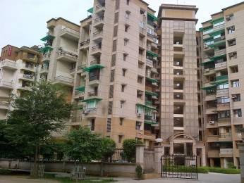 500 sqft, 1 bhk Apartment in Builder Khanna Properties Tagore Garden, Delhi at Rs. 10000