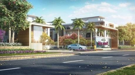 2406 sqft, 4 bhk Apartment in Rishita Mulberry Sushant Golf City, Lucknow at Rs. 2.3400 Cr