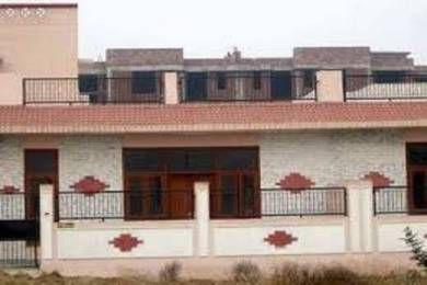 1050 sqft, 2 bhk Apartment in Ashiana Orchid Gamma 2, Greater Noida at Rs. 12000