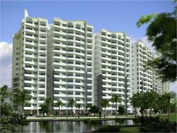 995 sqft, 3 bhk Apartment in Migsun Migsun Roof Raj Nagar Extension, Ghaziabad at Rs. 28.9545 Lacs