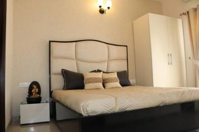 1350 sqft, 3 bhk Apartment in Future Casa Homes Sector 115 Mohali, Mohali at Rs. 39.0000 Lacs