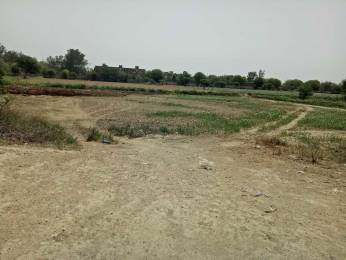 9000 sqft, Plot in Builder Project Jharoda Kalan, Delhi at Rs. 70.0000 Lacs