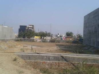 1033 sqft, Plot in Builder Project sector 116 Noida, Noida at Rs. 61.5900 Lacs