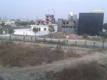 1356 sqft, Plot in Builder Project Sector-122 Noida, Noida at Rs. 69.4300 Lacs