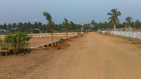 1215 sqft, Plot in Builder Project Kakinada Draksharama Road, Kakinada at Rs. 7.5000 Lacs
