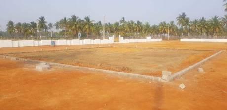 1350 sqft, Plot in Builder Jrk Kakinada Draksharama Road, Kakinada at Rs. 11.2500 Lacs