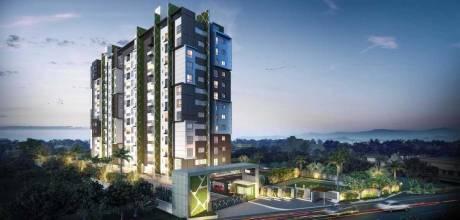 1270 sqft, 2 bhk Apartment in CoEvolve Northern Star Jakkur, Bangalore at Rs. 55.0000 Lacs