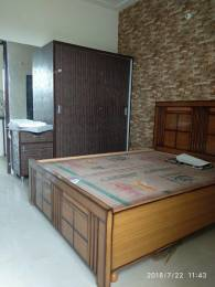 1125 sqft, 2 bhk Apartment in Builder Trumark HOmes Sunny Enclave Central Road, Mohali at Rs. 27.0000 Lacs