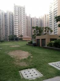 1025 sqft, 2 bhk Apartment in Builder Nirala estate Noida Extension, Greater Noida at Rs. 8000