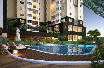 596 sqft, 1 bhk Apartment in Concorde Spring Meadows Jalahalli, Bangalore at Rs. 31.0000 Lacs