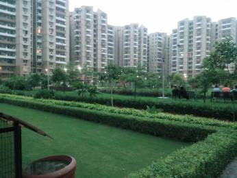 1694 sqft, 3 bhk Apartment in Stellar Jeevan Sector 1 Noida Extension, Greater Noida at Rs. 57.5000 Lacs