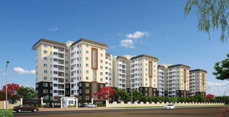 861 sqft, 2 bhk Apartment in Concorde Spring Meadows Jalahalli, Bangalore at Rs. 46.0000 Lacs