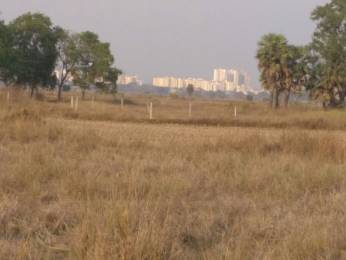 1500 sqft, Plot in Builder Nilakantha Nagar Retang, Bhubaneswar at Rs. 6.7500 Lacs
