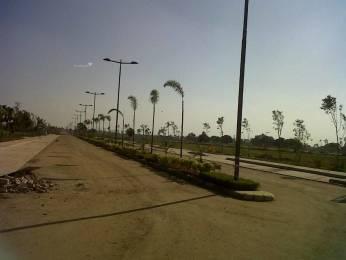 3150 sqft, Plot in DLF Hyde Park Plot Mullanpur, Mohali at Rs. 82.0000 Lacs