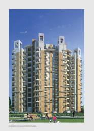 665 sqft, 1 bhk Apartment in Builder eldeco city dreams IIM Road, Lucknow at Rs. 23.5000 Lacs