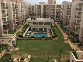 1700 sqft, 3 bhk BuilderFloor in Builder Omaxe panorama city Alwar Bypass Road, Bhiwadi at Rs. 34.0000 Lacs