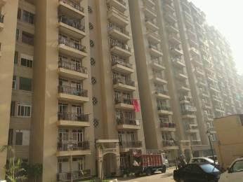 550 sqft, 1 bhk Apartment in Raison Saffron Homes Sector 22 Bhiwadi, Bhiwadi at Rs. 14.0000 Lacs