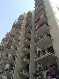 750 sqft, 1 bhk Apartment in Cosmos Greens Sector 18 Bhiwadi, Bhiwadi at Rs. 16.0000 Lacs