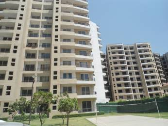 1445 sqft, 2 bhk Apartment in MVL Coral Sector 18 Bhiwadi, Bhiwadi at Rs. 29.5000 Lacs