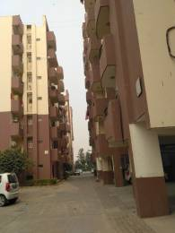 1400 sqft, 3 bhk Apartment in Trehan Hill View Garden Phase1 and Phase2 Sector 39 Bhiwadi, Bhiwadi at Rs. 21.5000 Lacs