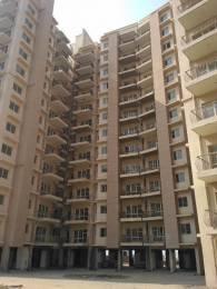 1300 sqft, 2 bhk Apartment in Avalon Rangoli Sector 24 Dharuhera, Dharuhera at Rs. 27.5000 Lacs