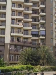 1590 sqft, 3 bhk Apartment in Dwarkadhish Aravali Heights Sector 24 Dharuhera, Dharuhera at Rs. 34.0000 Lacs