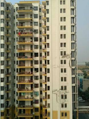 747 sqft, 1 bhk Apartment in Vipul Gardens Sector 1 Dharuhera, Dharuhera at Rs. 19.5000 Lacs