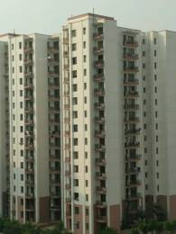 747 sqft, 1 bhk Apartment in Vipul Gardens Sector 1 Dharuhera, Dharuhera at Rs. 19.5000 Lacs