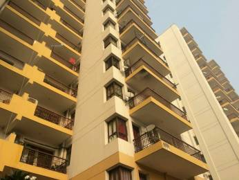 1240 sqft, 2 bhk Apartment in Vipul Gardens Sector 1 Dharuhera, Dharuhera at Rs. 29.5000 Lacs