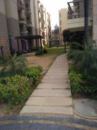 1215 sqft, 3 bhk Apartment in Terra Greens Sector 16 Bhiwadi, Bhiwadi at Rs. 27.0000 Lacs
